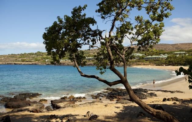 Lanai Beaches