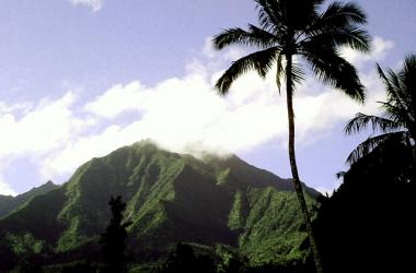 Hawaiian Slack Key Guitar & Ukulele Concert - Ahupuaa - Mountain to Sea