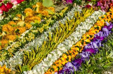 Sew A Lei For Memorial Day