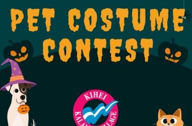 Virtual Pet Costume Contest
