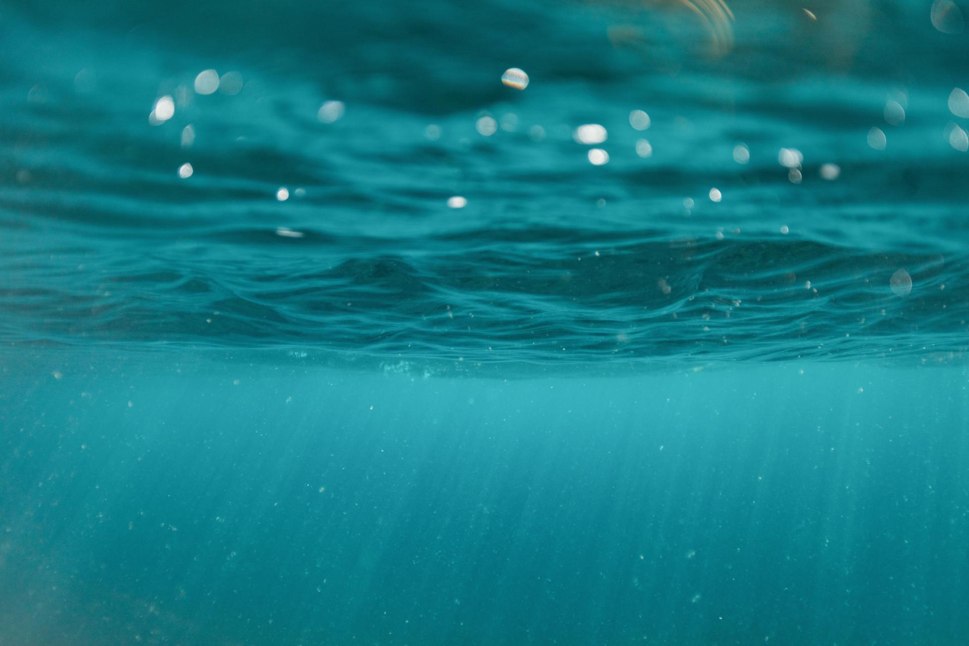 Puuloa Guardian Sharks, water