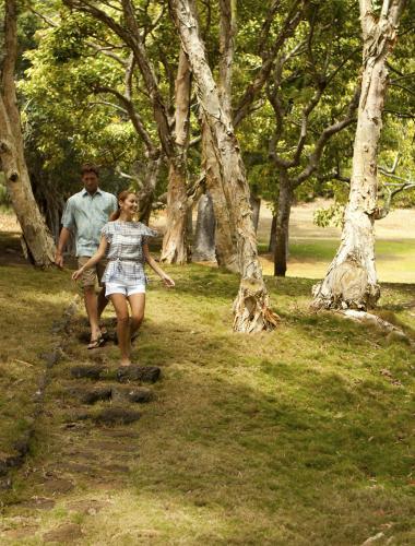 Scenic hiking trail on the Hawaiian island of Lanai
