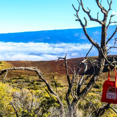 Mauna Kea - Hawaii Island