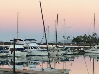 Ala Moana Bowls, Ala Wai Boat Harbor
