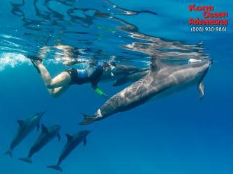 Snorkel Adventures!