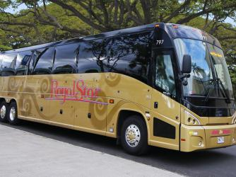 Deluxe Gold Motorcoach