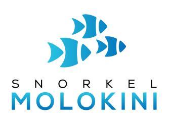 Snorkel Molokini